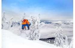 ТОП -10 сноубордических брендов